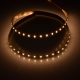 MN 3014 120 24 8 water proof led strip ip67 china factory fast lead time