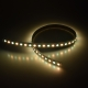 RGBW 5050 96 24 12 dynamic color led strip china factory high bright1