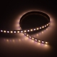 RGBW 5050 96 24 12 dynamic color led strip china factory high bright2