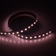 RGBW 5050I 84 24 12 dynamic color led strip china factory high bright1