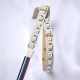 RGBW 5050I 84 24 12 dynamic color led strip china factory high bright6