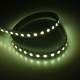 RGBW 5050I 96 24 12 dynamic color led strip china factory high bright1