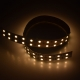 MN 5050 120 24 20 water proof led strip ip67 china factory fast lead time